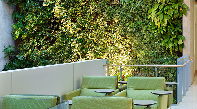 medical-education-building-atrium-02b-green-wall